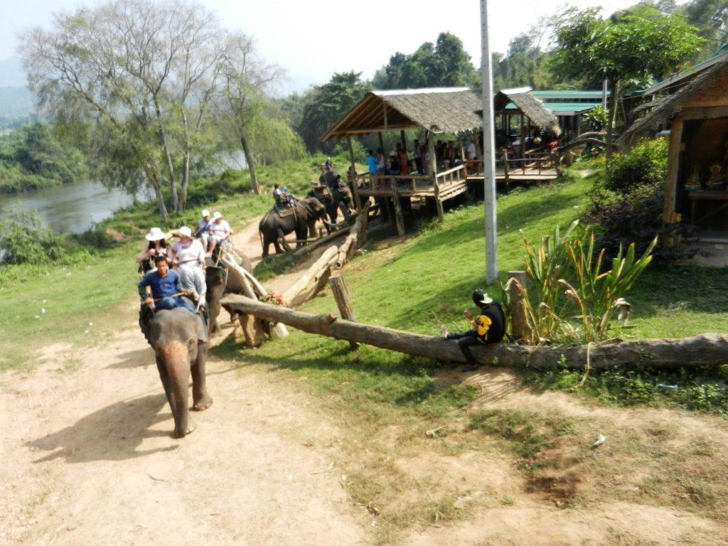 Экскурсия на реку Квай. Туристов катают на слонах.