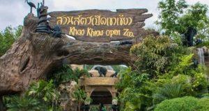 Экскурсия в зоопарк Кхао Кхео